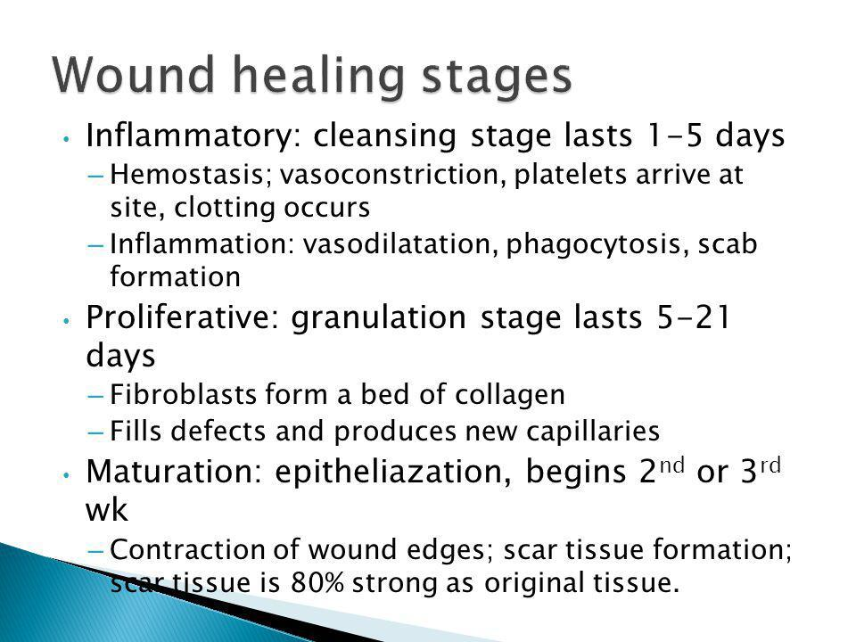 Wound healing stages Inflammatory: cleansing stage lasts 1-5 days