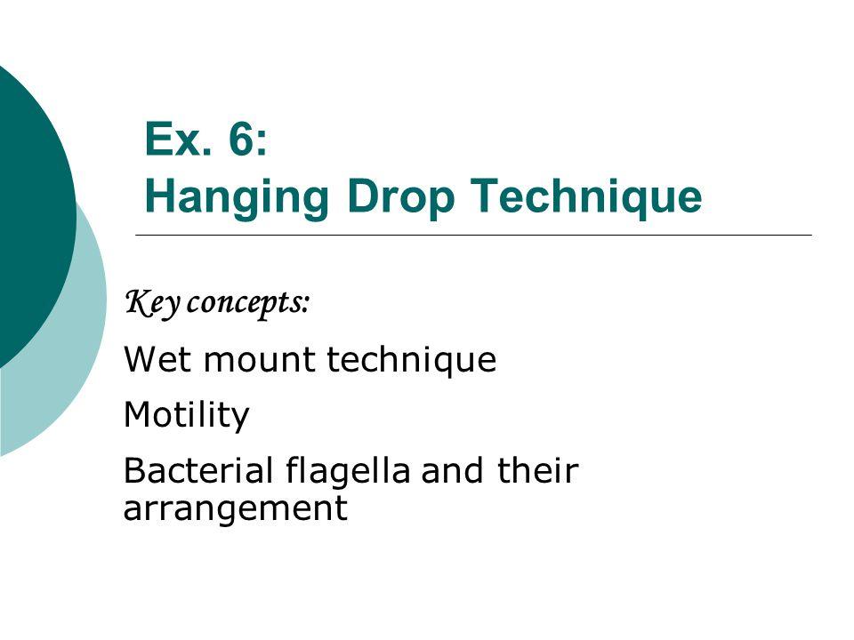 Ex. 6: Hanging Drop Technique
