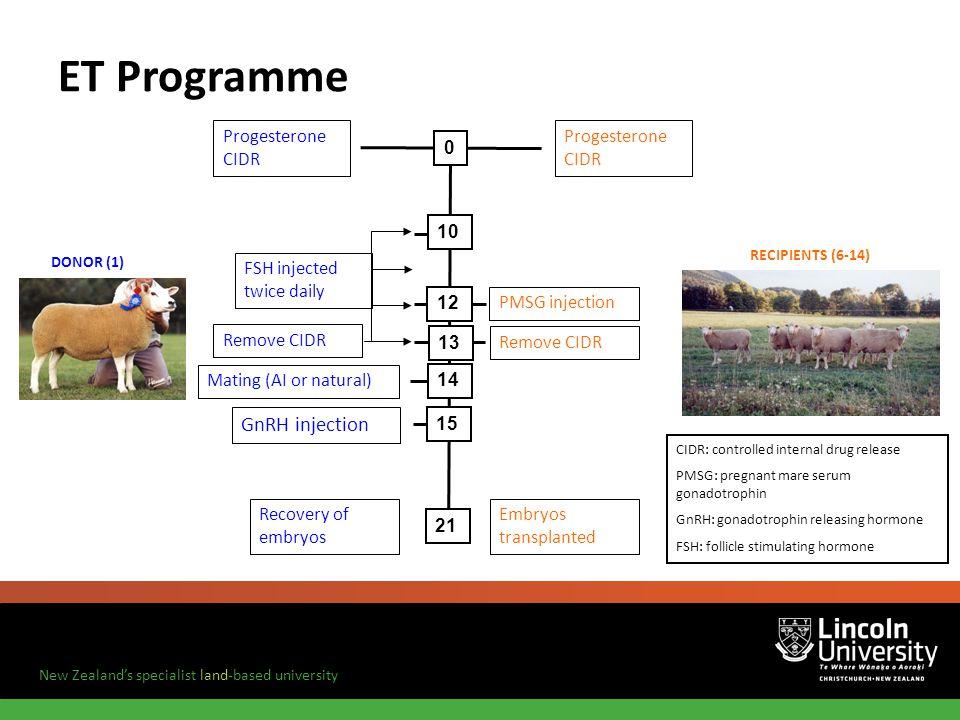 ET Programme GnRH injection Progesterone CIDR Progesterone CIDR 10