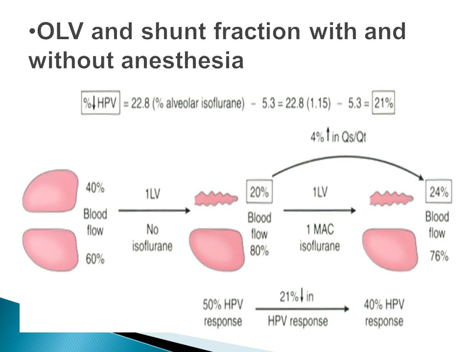 OLV and shunt fraction with and without anesthesia