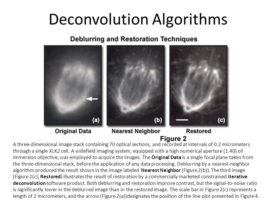 Deconvolution Algorithms
