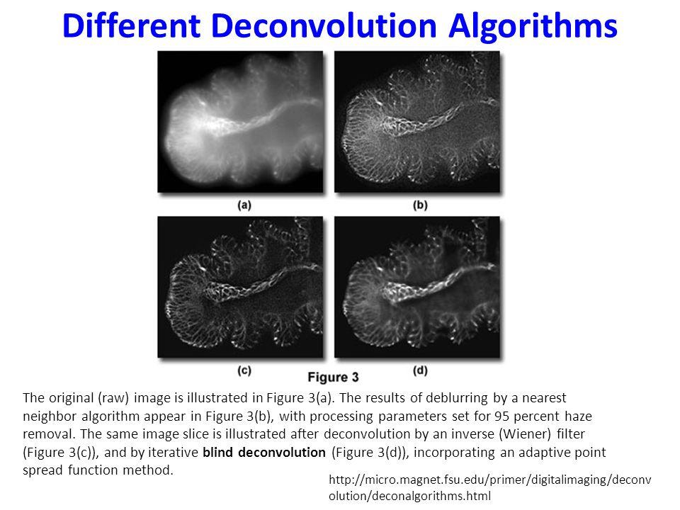 Different Deconvolution Algorithms