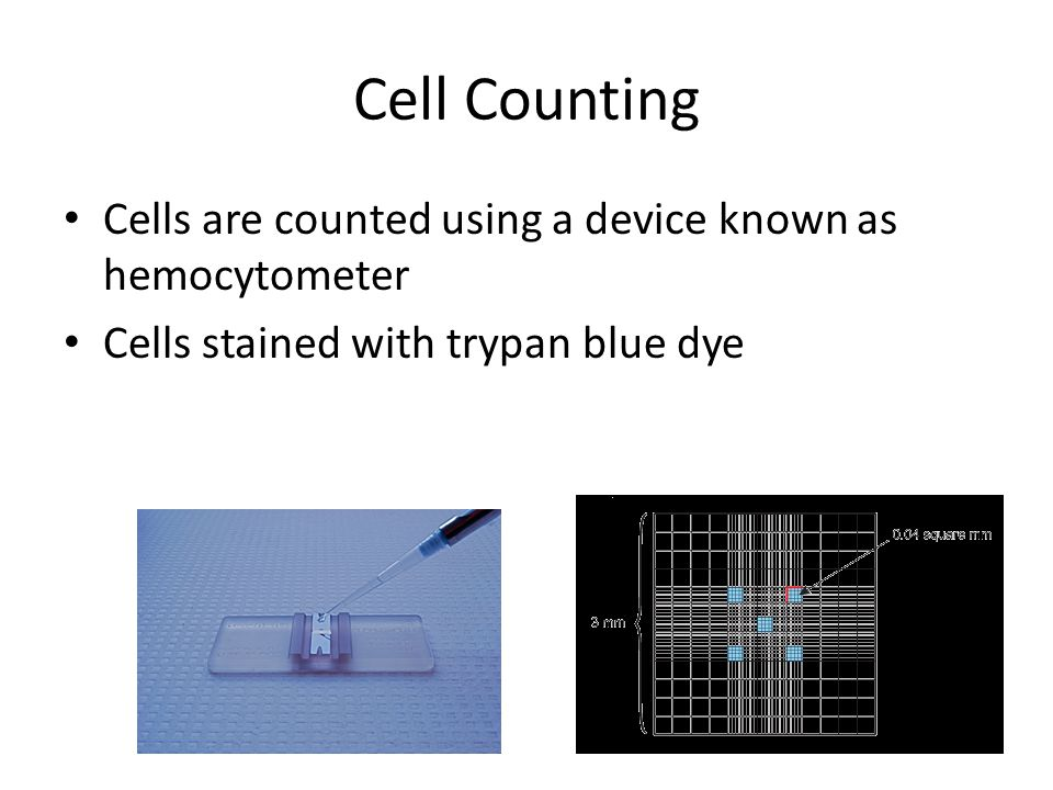Cell Counting Cells are counted using a device known as hemocytometer