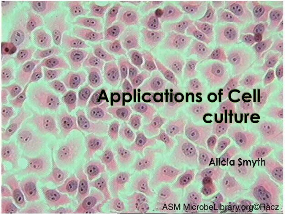 Applications of Cell culture