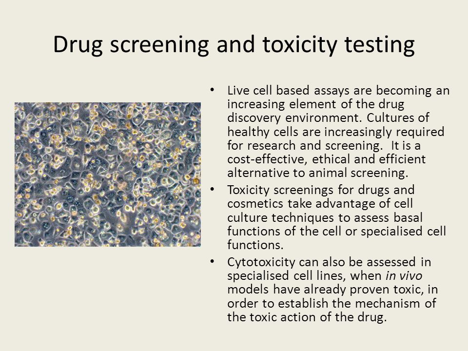 Drug screening and toxicity testing
