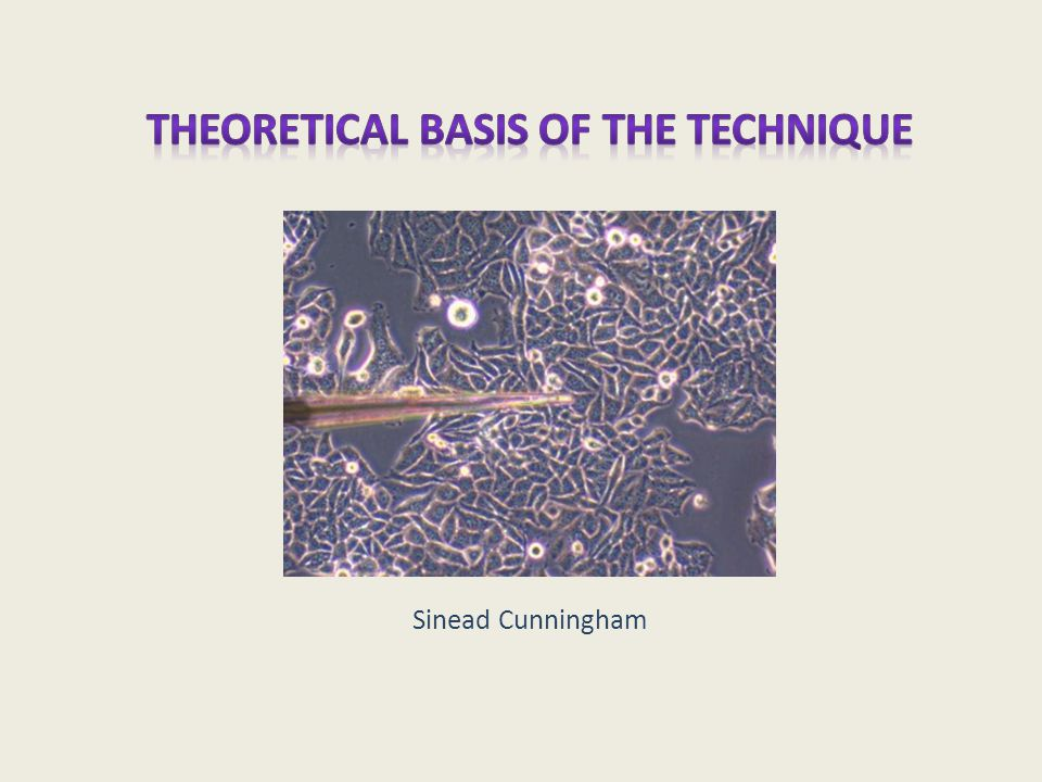 Theoretical basis of the Technique Sinead Cunningham