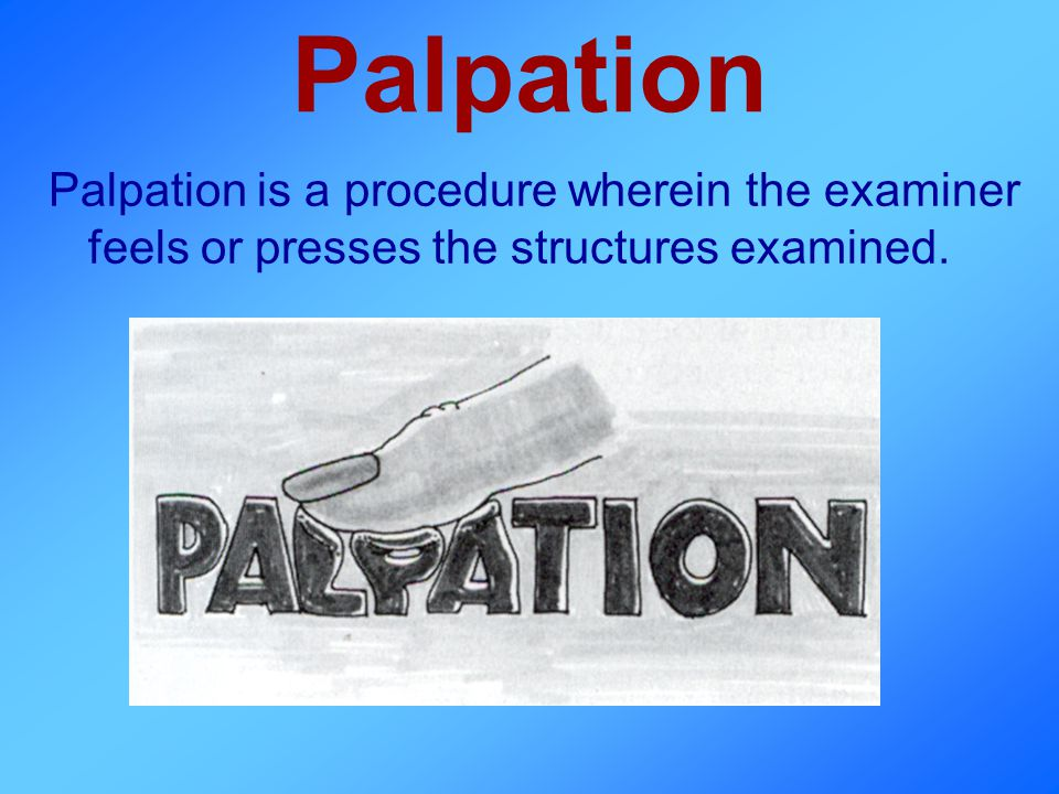 Palpation Palpation is a procedure wherein the examiner feels or presses the structures examined.