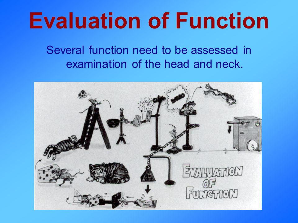 Evaluation of Function