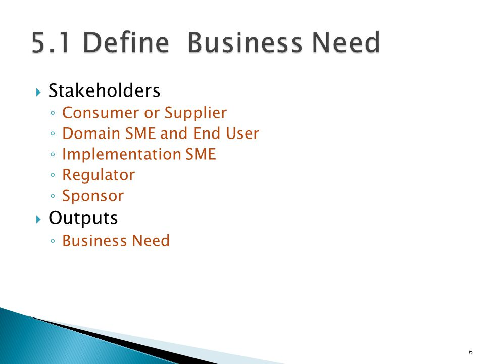 5.1 Define Business Need Stakeholders Outputs Consumer or Supplier