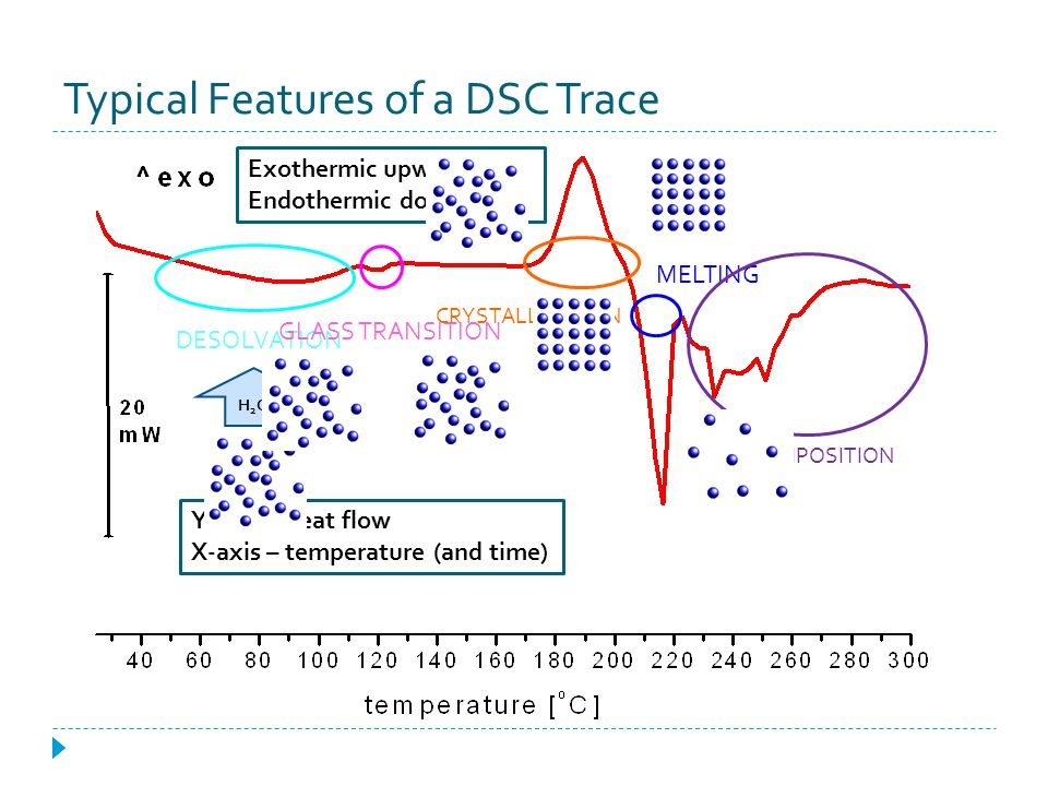 Typical Features of a DSC Trace