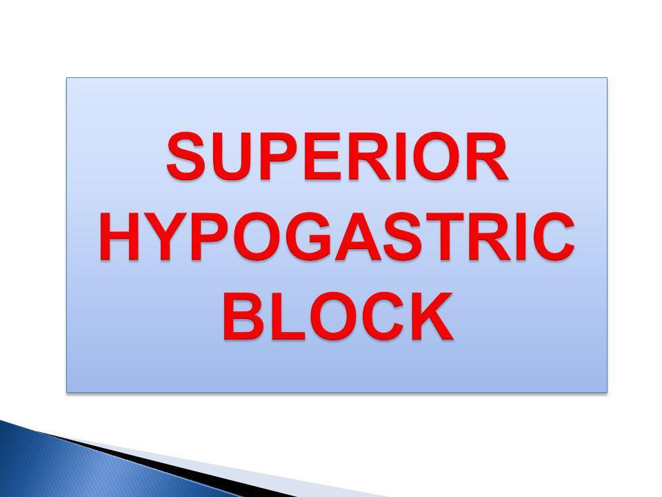 SUPERIOR HYPOGASTRIC BLOCK