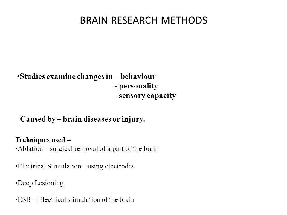 BRAIN RESEARCH METHODS