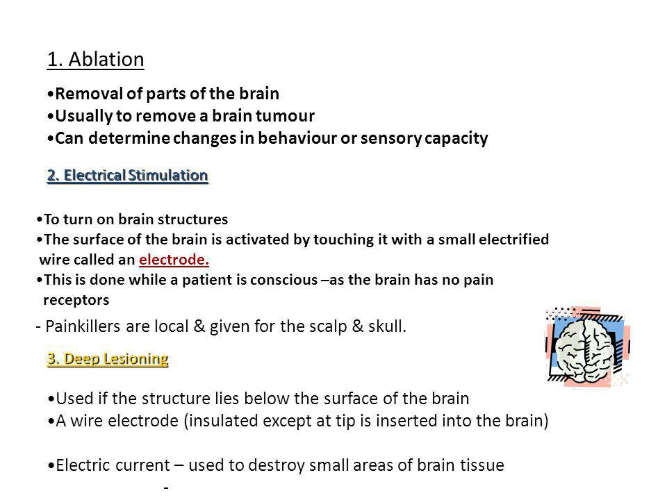 1. Ablation Removal of parts of the brain
