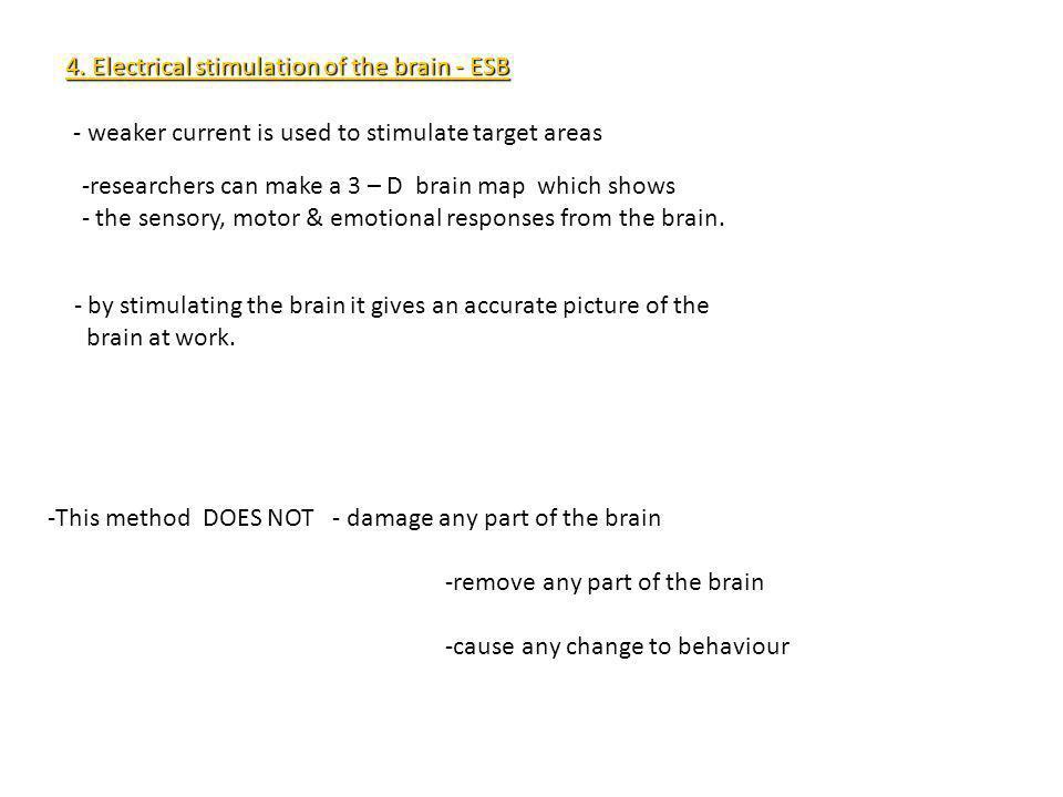 4. Electrical stimulation of the brain - ESB