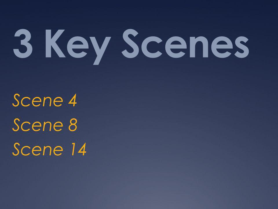3 Key Scenes Scene 4 Scene 8 Scene 14