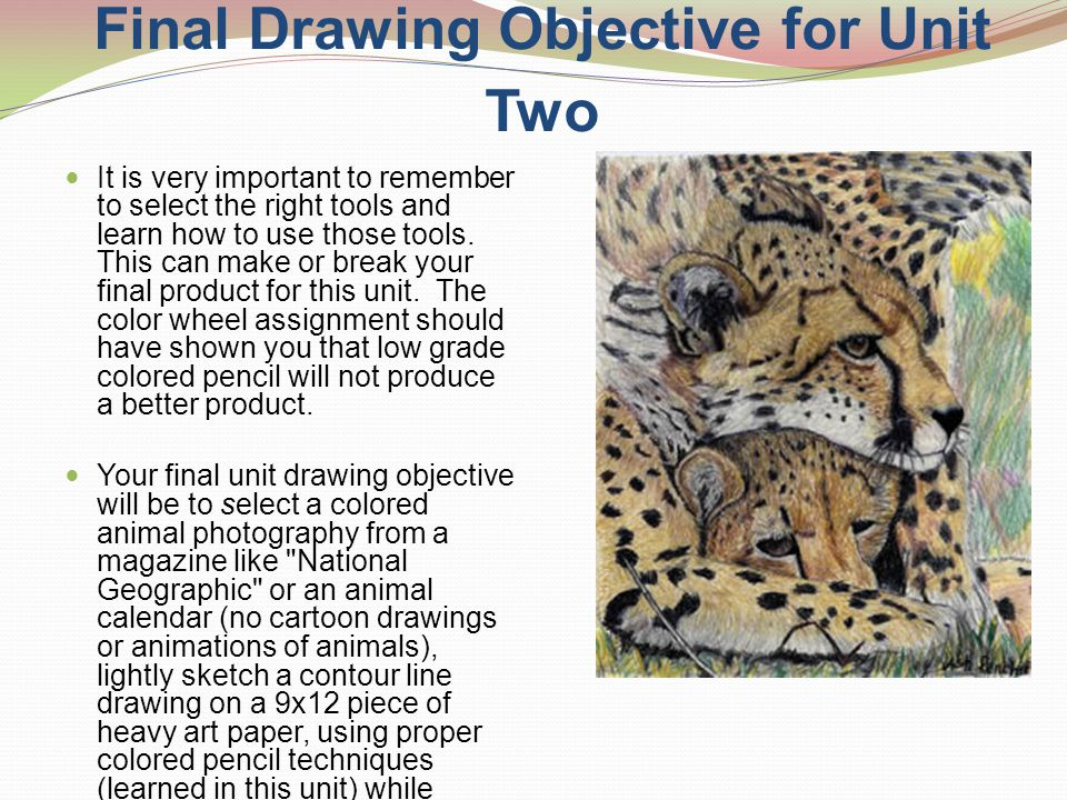 Final Drawing Objective for Unit Two