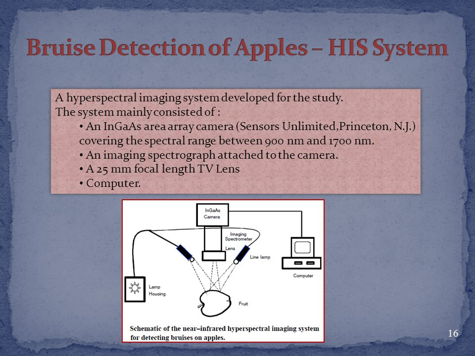 Bruise Detection of Apples – HIS System