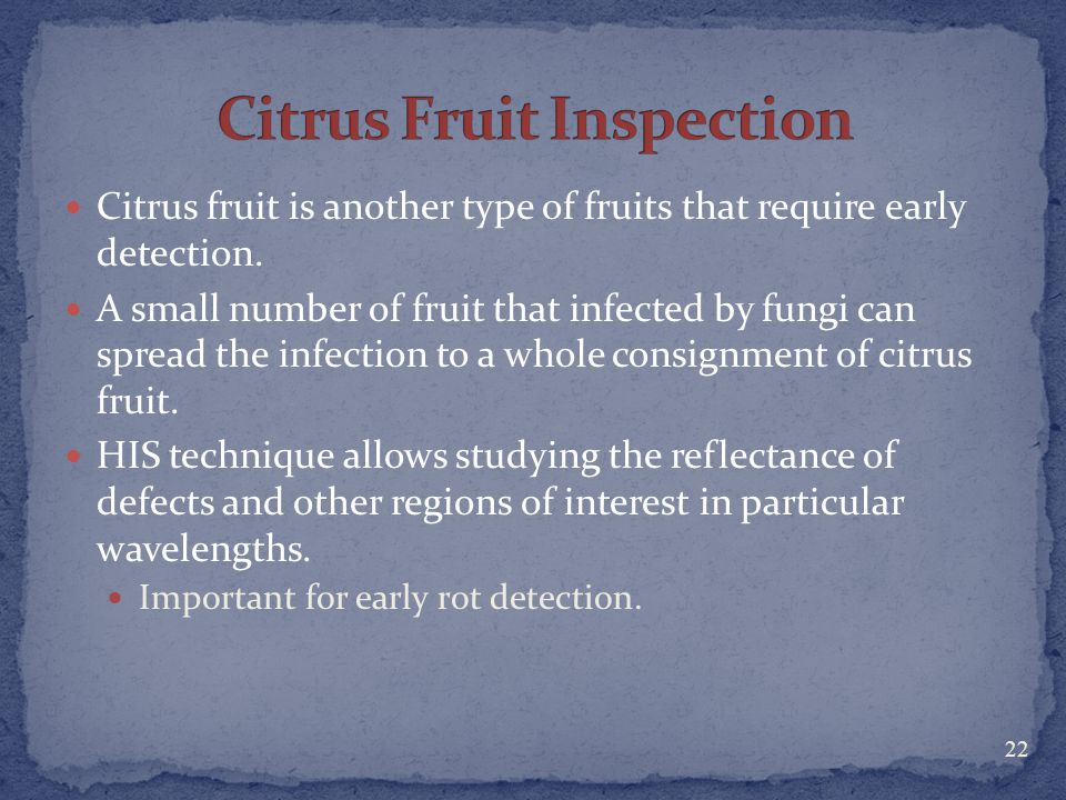 Citrus Fruit Inspection