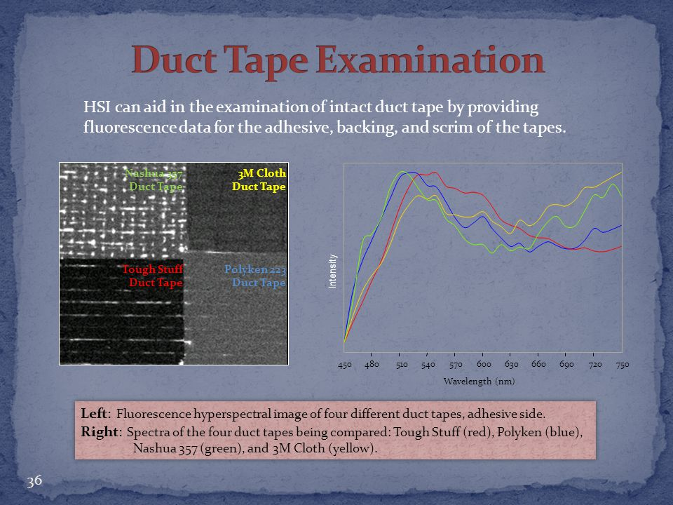 Duct Tape Examination