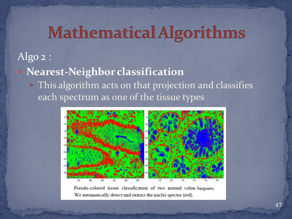 Mathematical Algorithms