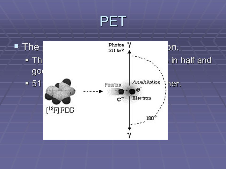 PET The particle decays by annihilation.
