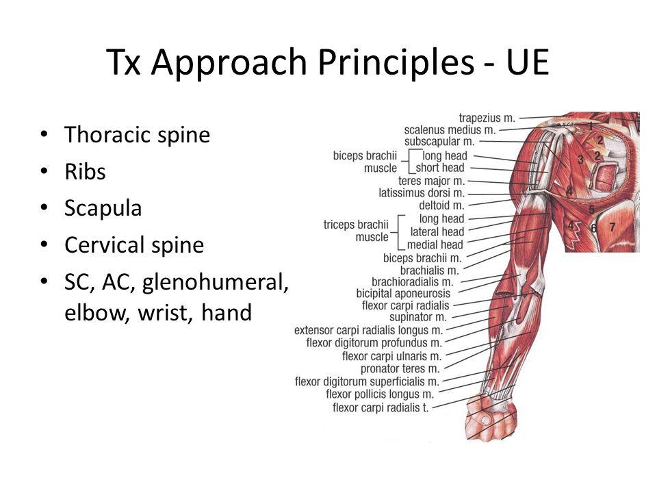 Tx Approach Principles - UE