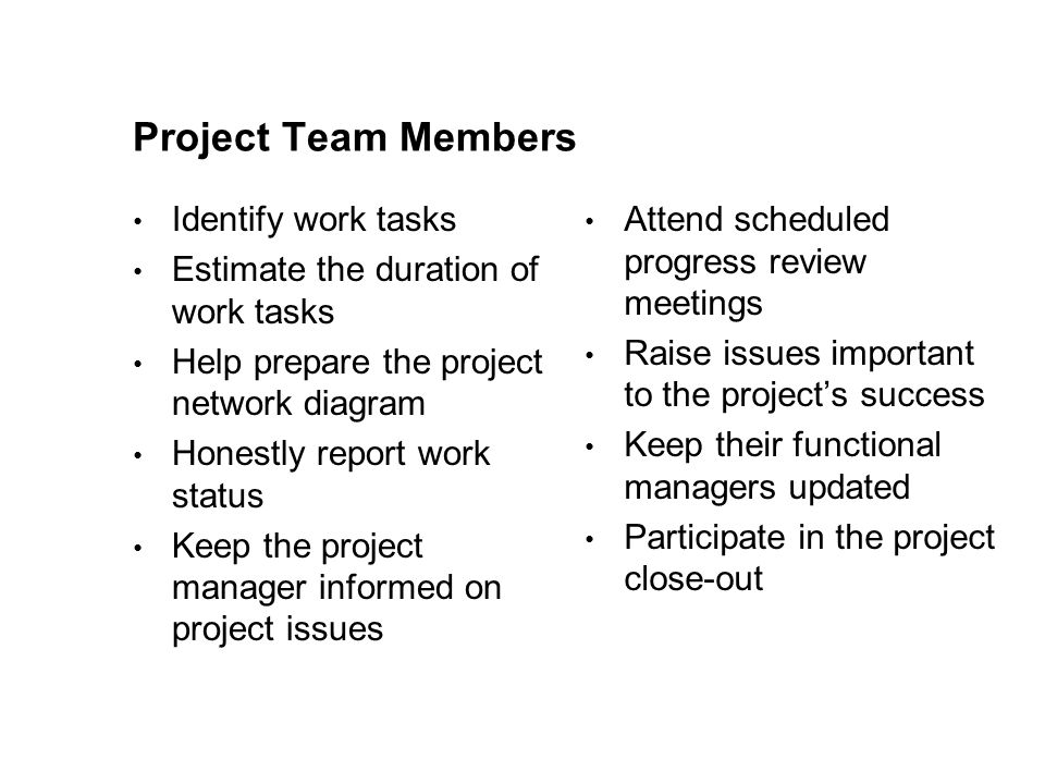 Project Team Members Identify work tasks
