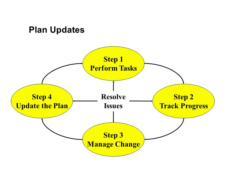 Plan Updates Step 1 Perform Tasks Step 4 Update the Plan Step 2