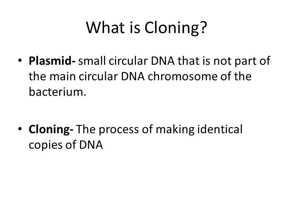 What is Cloning Plasmid- small circular DNA that is not part of the main circular DNA chromosome of the bacterium.