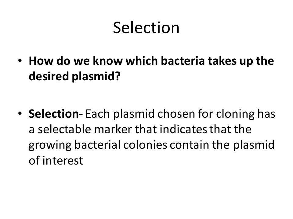 Selection How do we know which bacteria takes up the desired plasmid