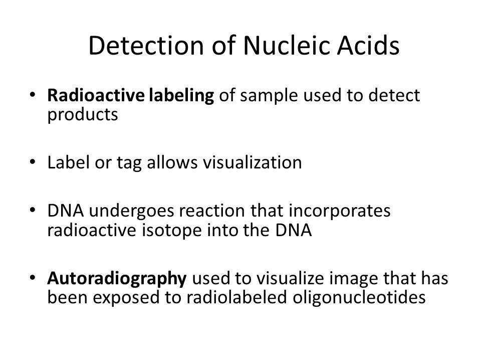 Detection of Nucleic Acids