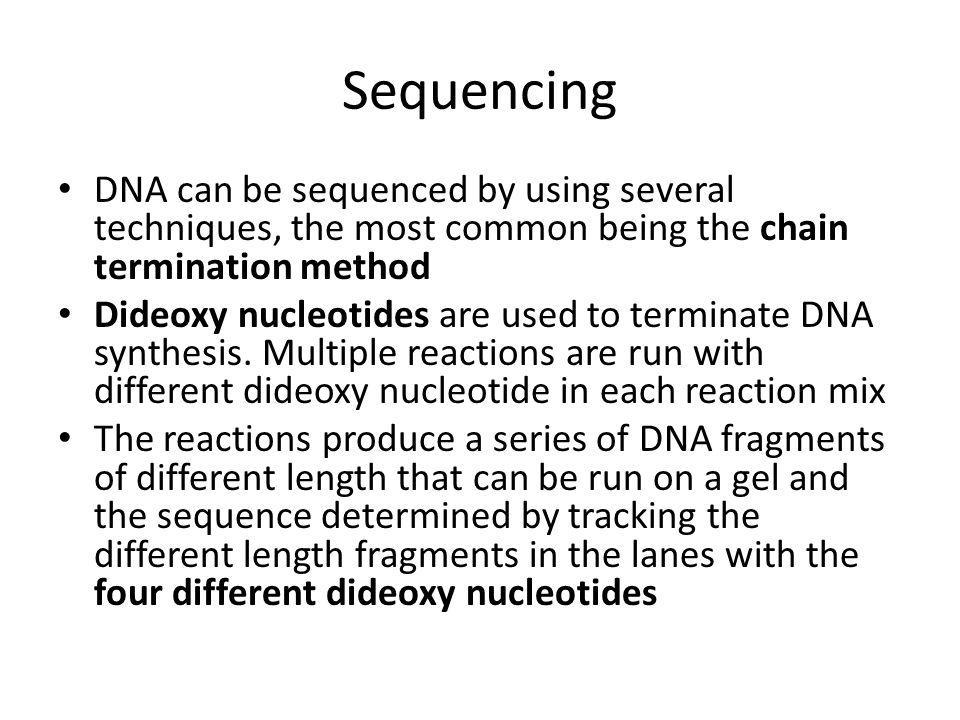 Sequencing DNA can be sequenced by using several techniques, the most common being the chain termination method.