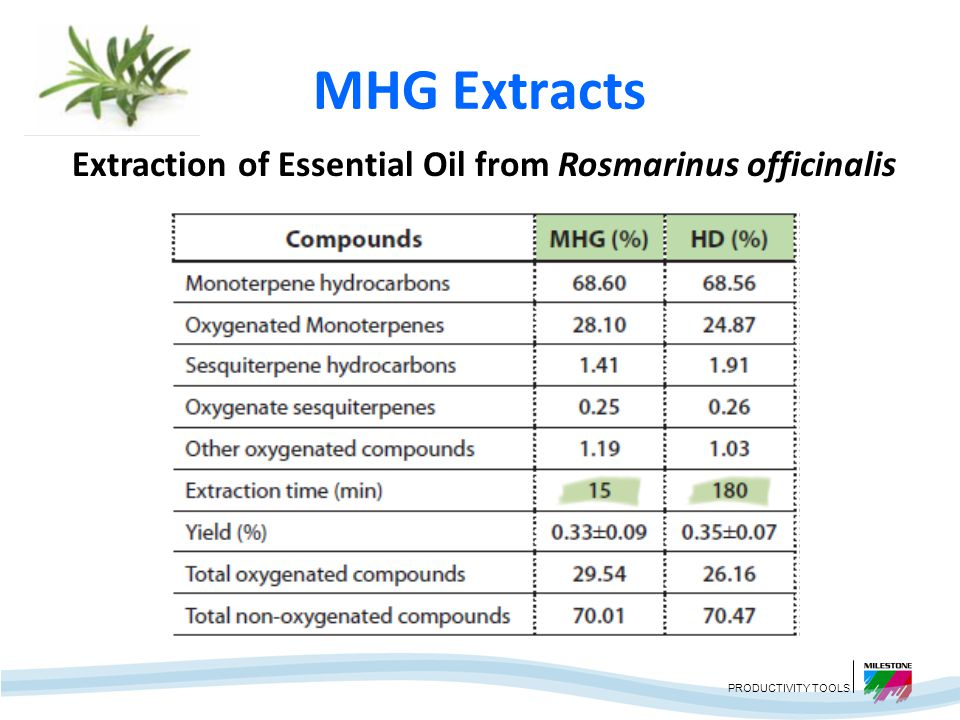 Extraction of Essential Oil from Rosmarinus officinalis