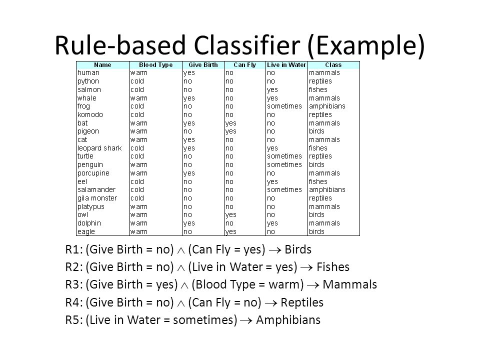 Rule-based Classifier (Example)