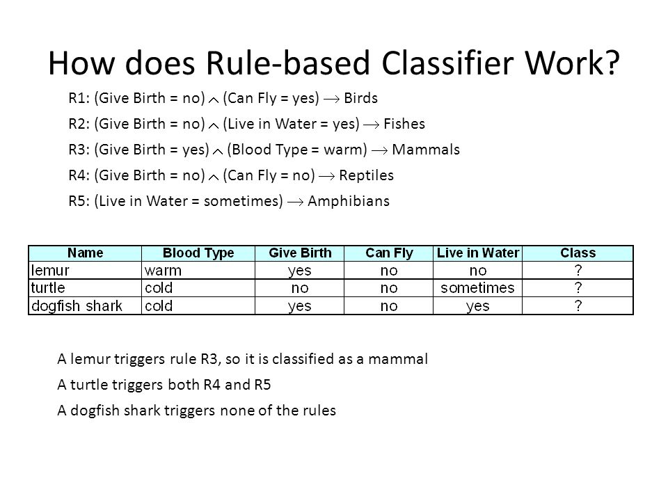 How does Rule-based Classifier Work
