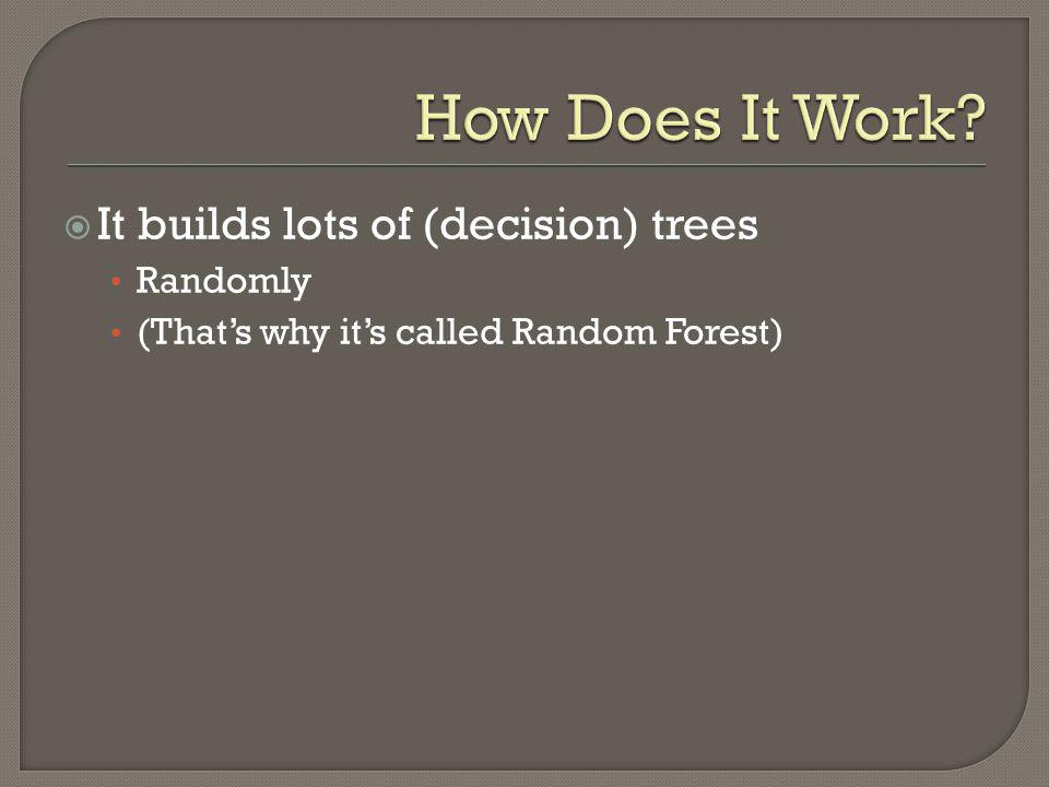 How Does It Work It builds lots of (decision) trees Randomly