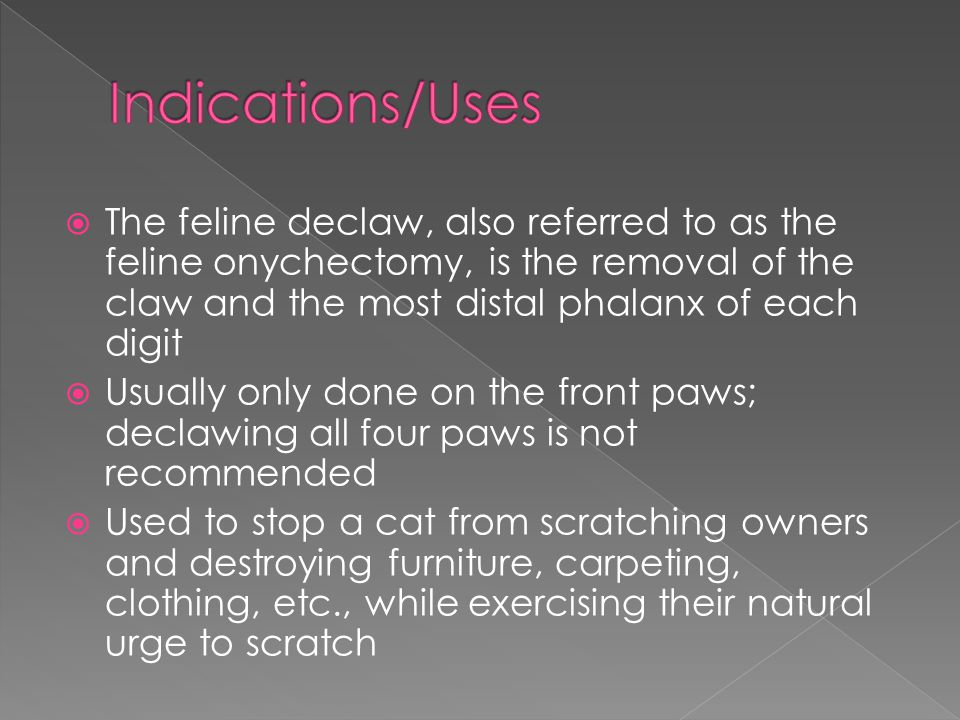 Indications/Uses The feline declaw, also referred to as the feline onychectomy, is the removal of the claw and the most distal phalanx of each digit.
