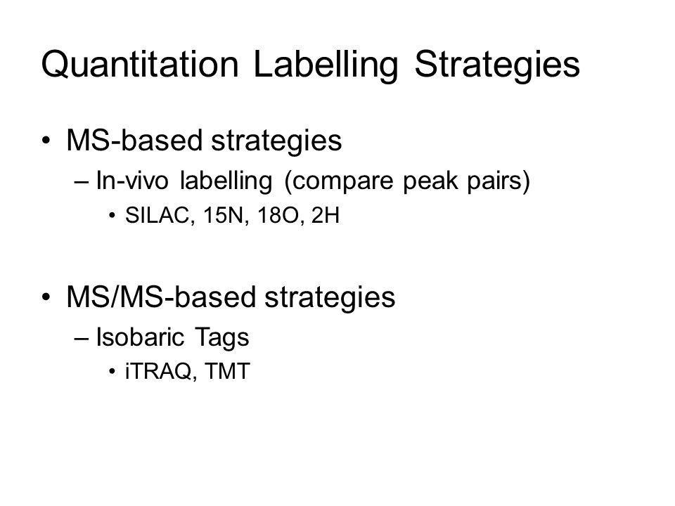 Quantitation Labelling Strategies