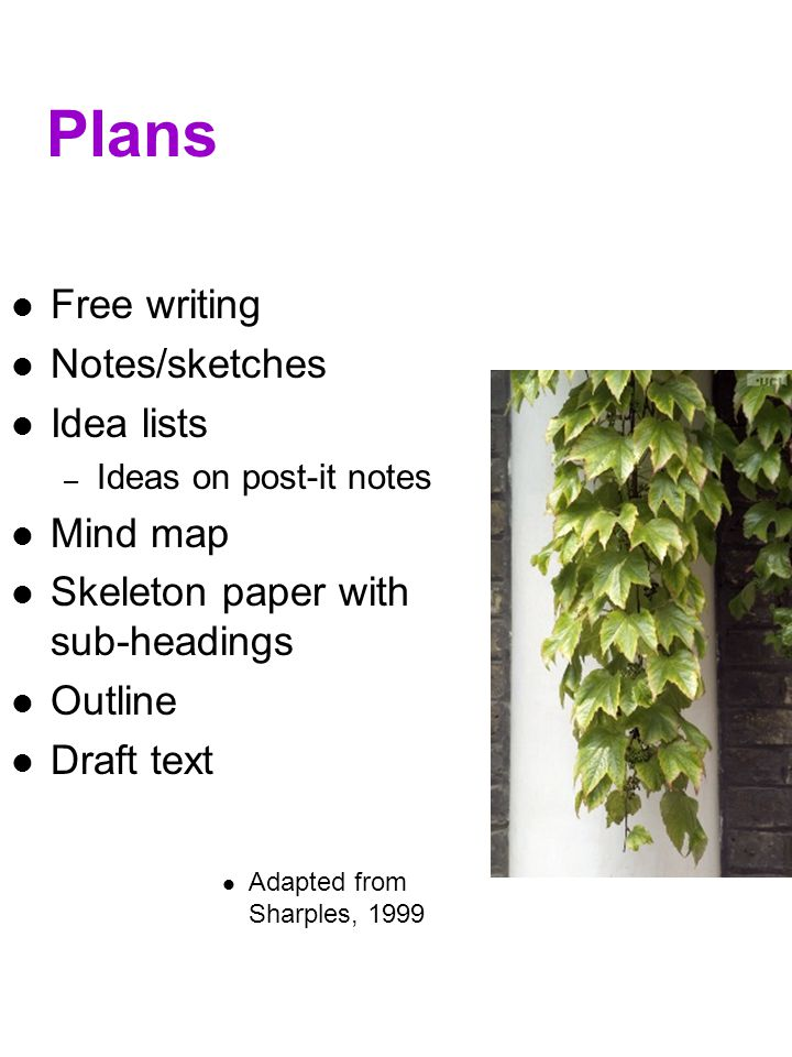 Plans Free writing Notes/sketches Idea lists Mind map