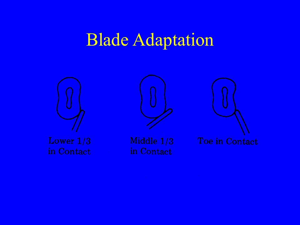 Blade Adaptation