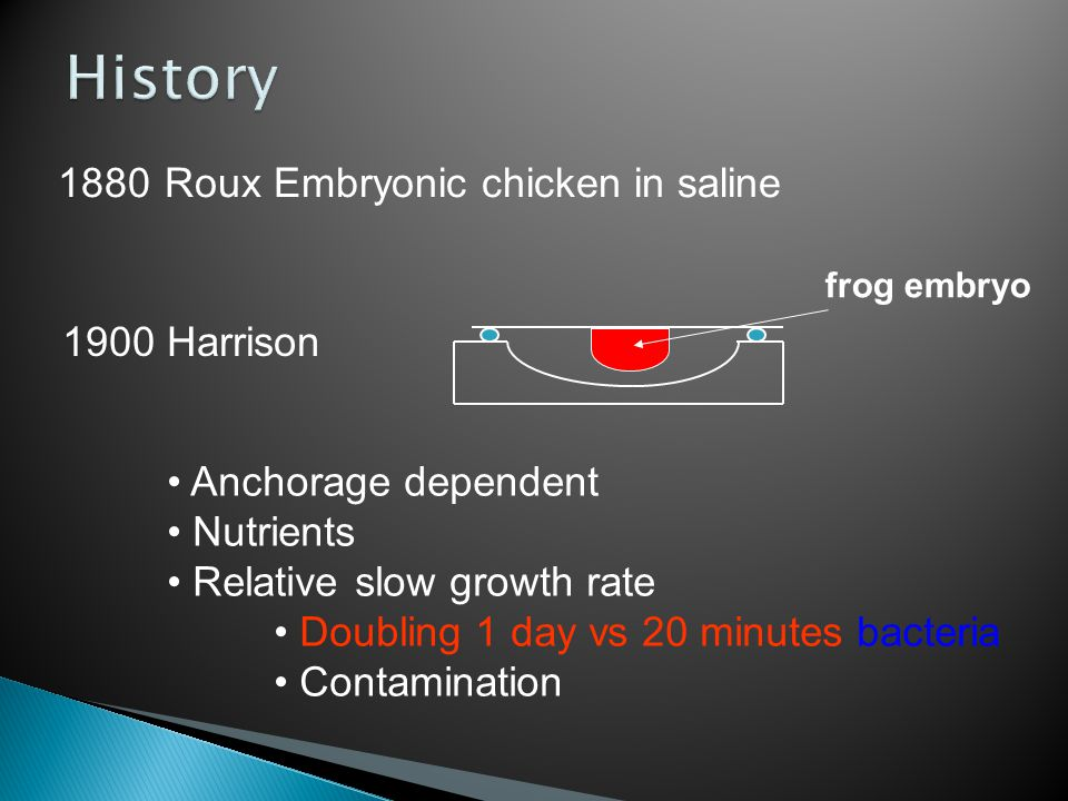 History 1880 Roux Embryonic chicken in saline 1900 Harrison