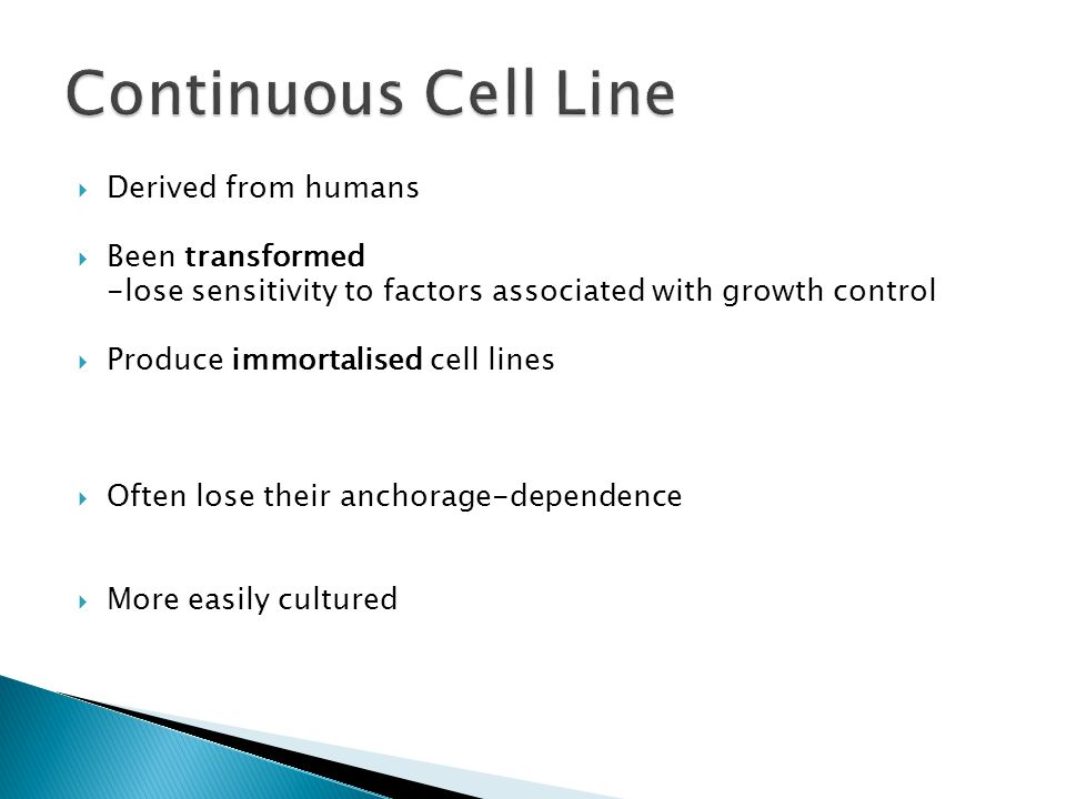 Continuous Cell Line Derived from humans Been transformed