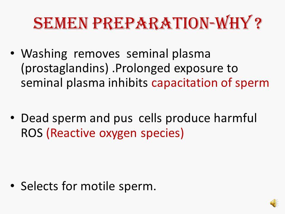 SEMEN PREPARATION-Why