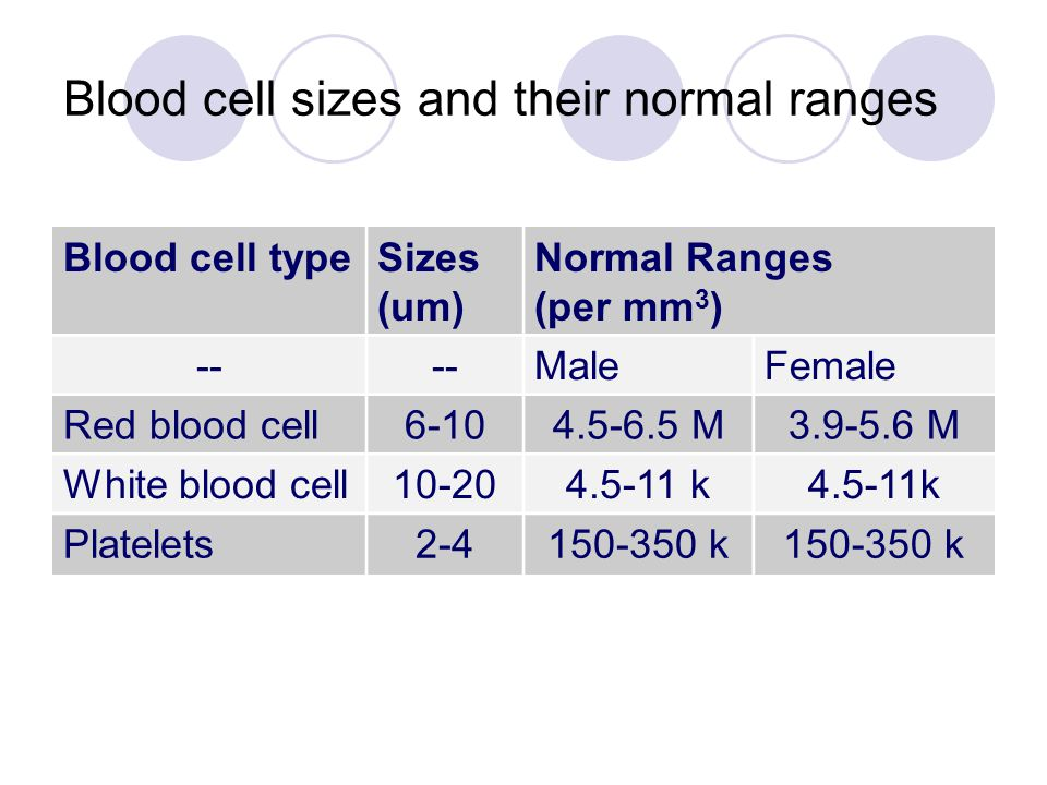 Blood cell sizes and their normal ranges