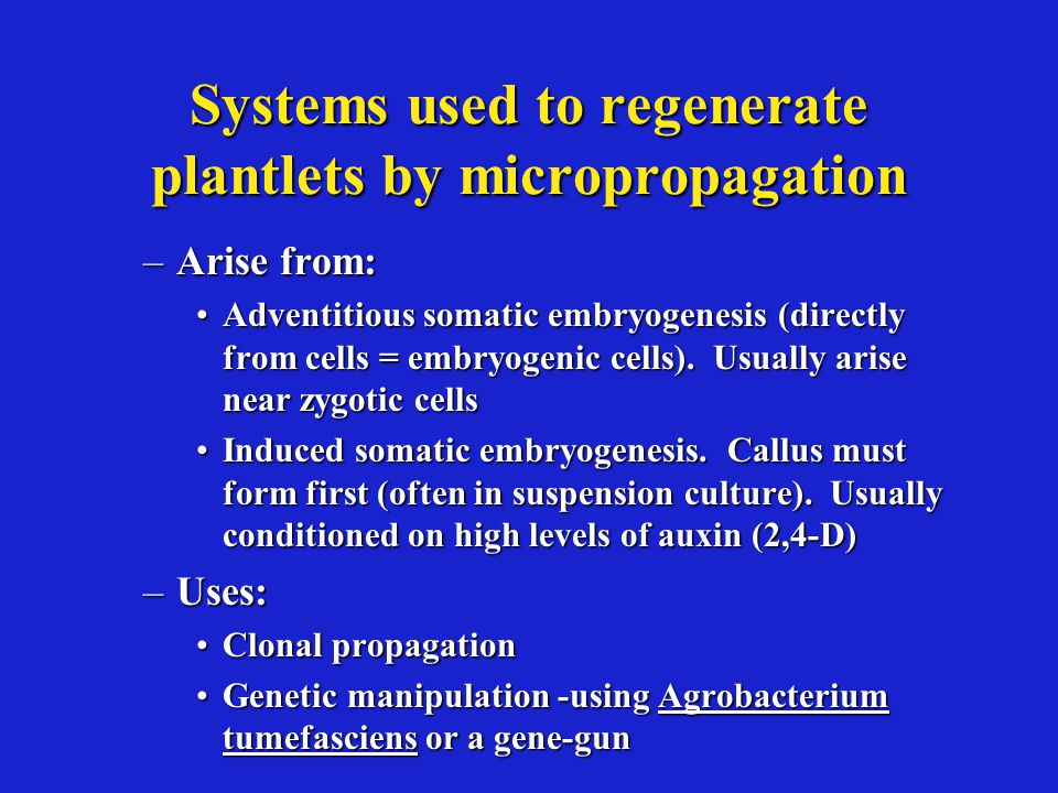 Systems used to regenerate plantlets by micropropagation