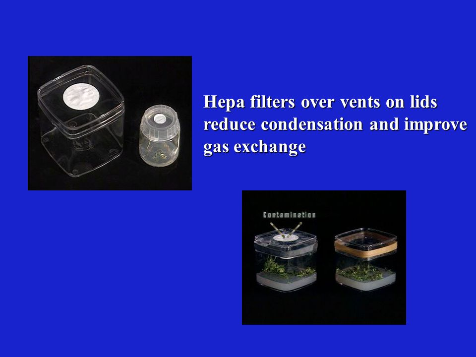 Hepa filters over vents on lids