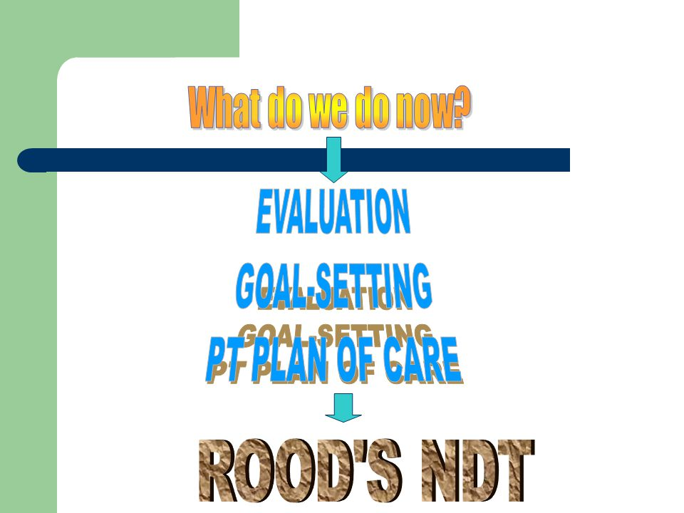 What do we do now EVALUATION GOAL-SETTING PT PLAN OF CARE ROOD S NDT