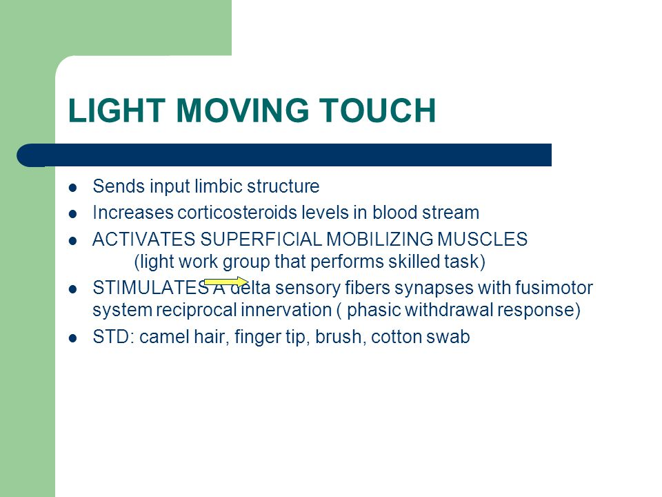 LIGHT MOVING TOUCH Sends input limbic structure
