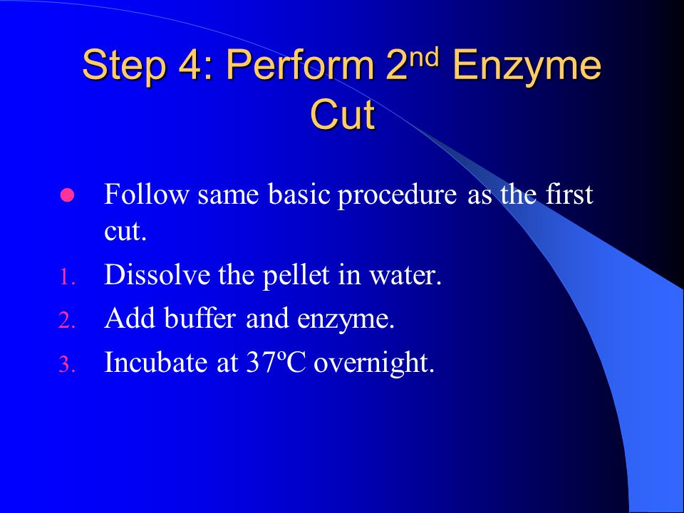 Step 4: Perform 2nd Enzyme Cut