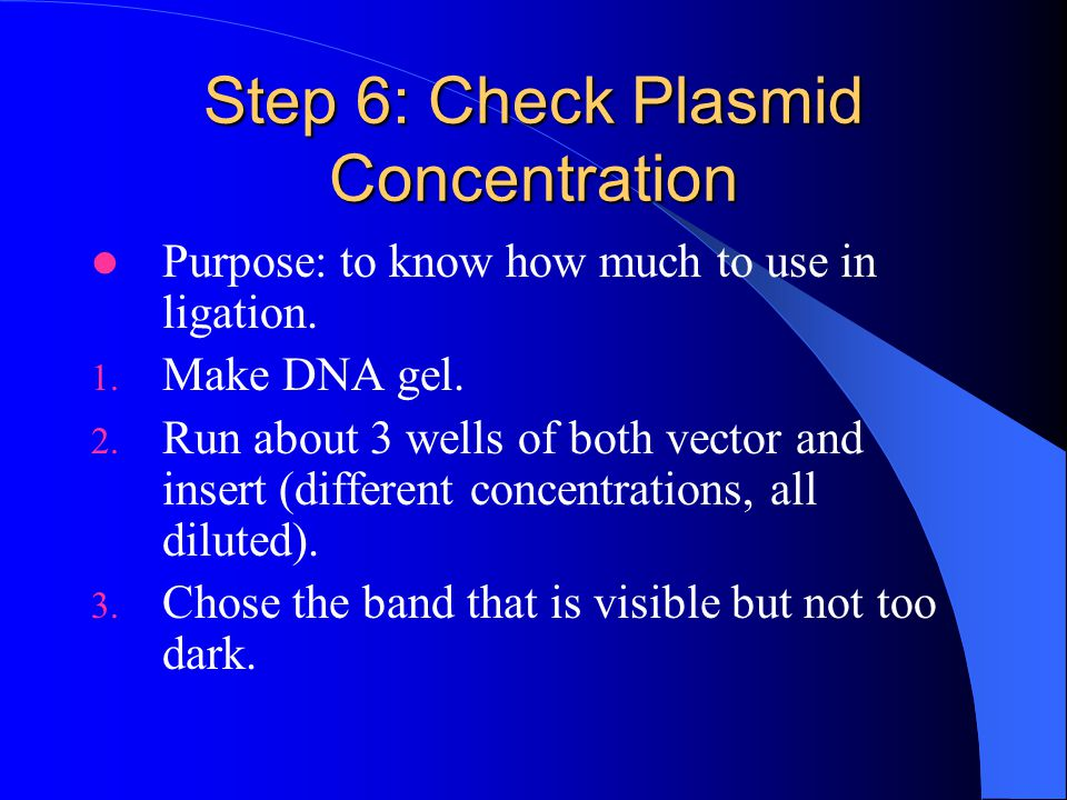 Step 6: Check Plasmid Concentration